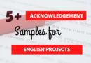 Top 5 Examples of Acknowledgement for English Project